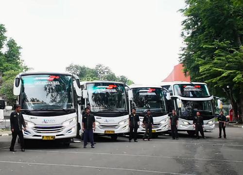 crew transportasi bus