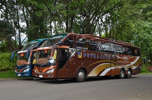 scania bus
